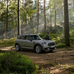 Countryman One