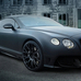 Continental GTC Duro by DMC